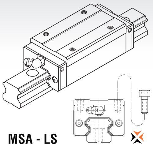 MSA - LS
